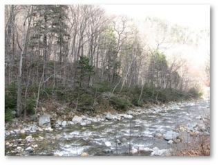 Amberlee - Cold River MA